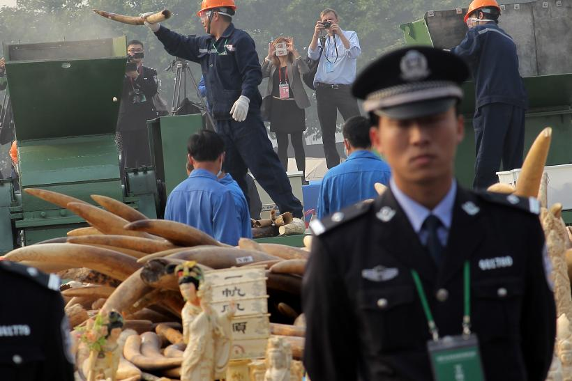 China illegal ivory