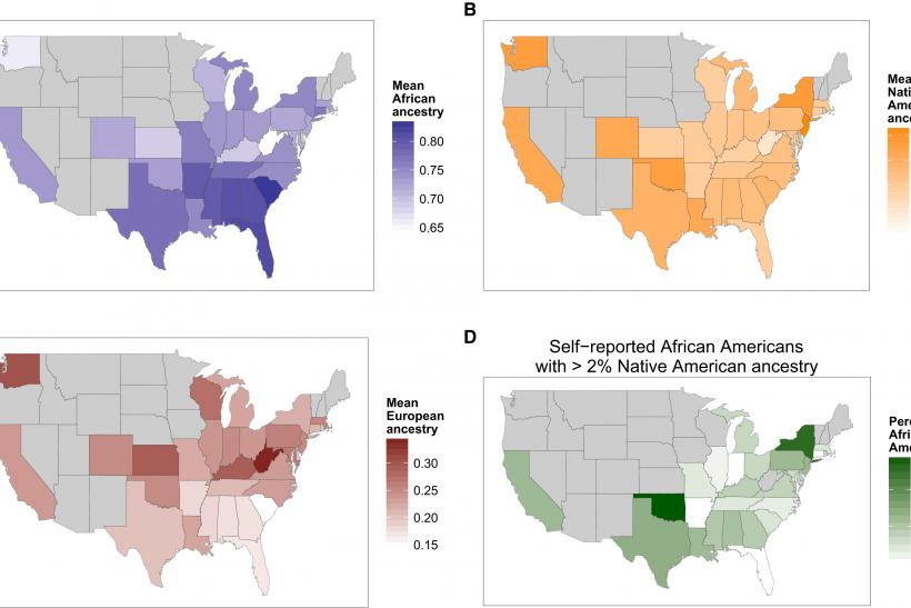 The Distribution of Ancestry of Self-Reported African Americans across the US
