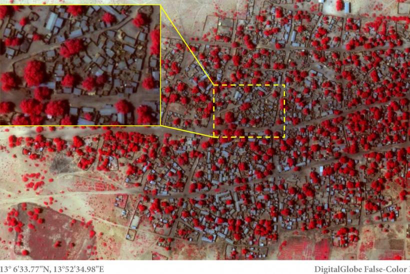 Boko Haram Baga Attack Satellite Images