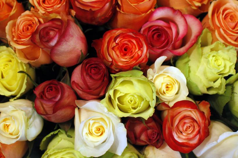 valentines day 2015 how to order flowers online so they get delivered on saturday