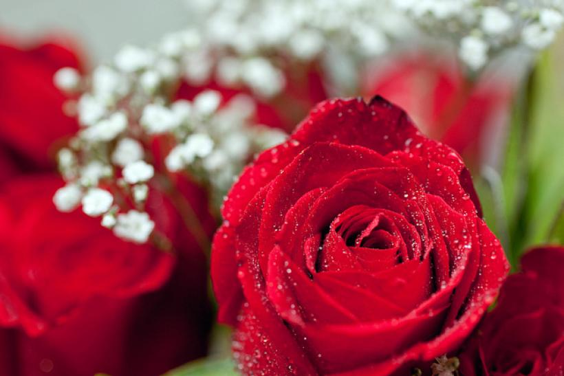 Valentine s day gift ideas for her 2015 5 original for Buying roses on valentines day