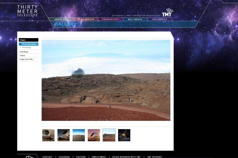 Screengrab of TMT website