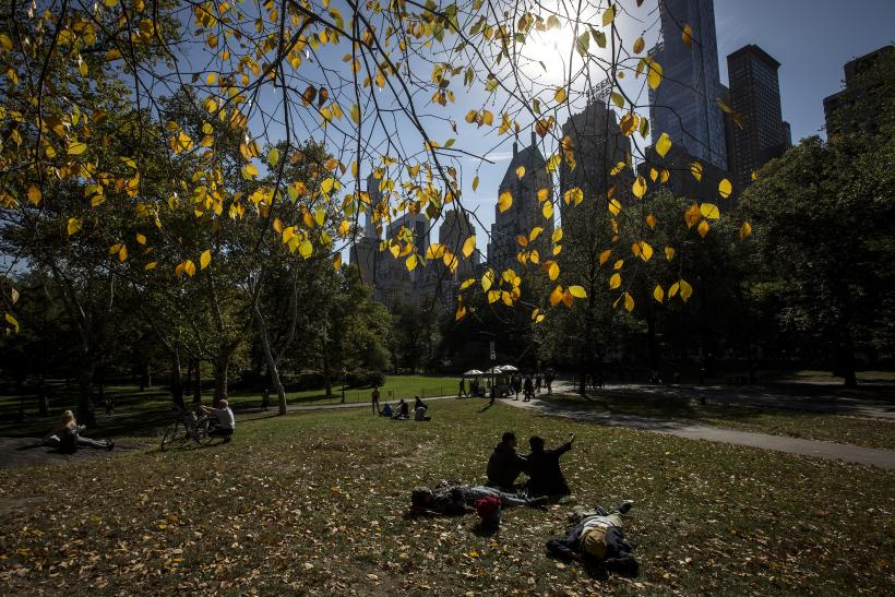 Central Park bathed in sunlight