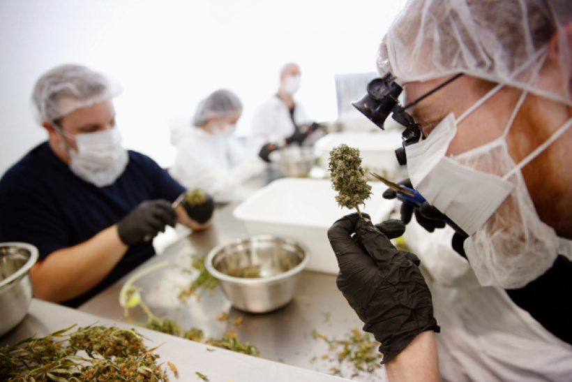 Ireland takes the first steps towards relaxing medical marijuana laws.