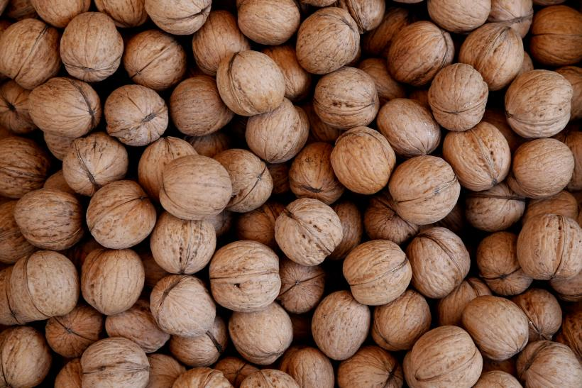 Cure For Alzheimer's Found? Walnuts May Delay, Reduce And Prevent Disease