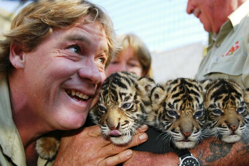 Steve Irwin Quotes Famous Sayings By The Crocodile Hunter On His 55th Birthday