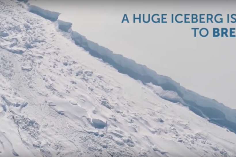 Larsen C ice shelf iceberg