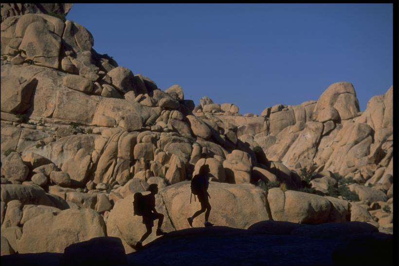 Joshua Tree Hikers