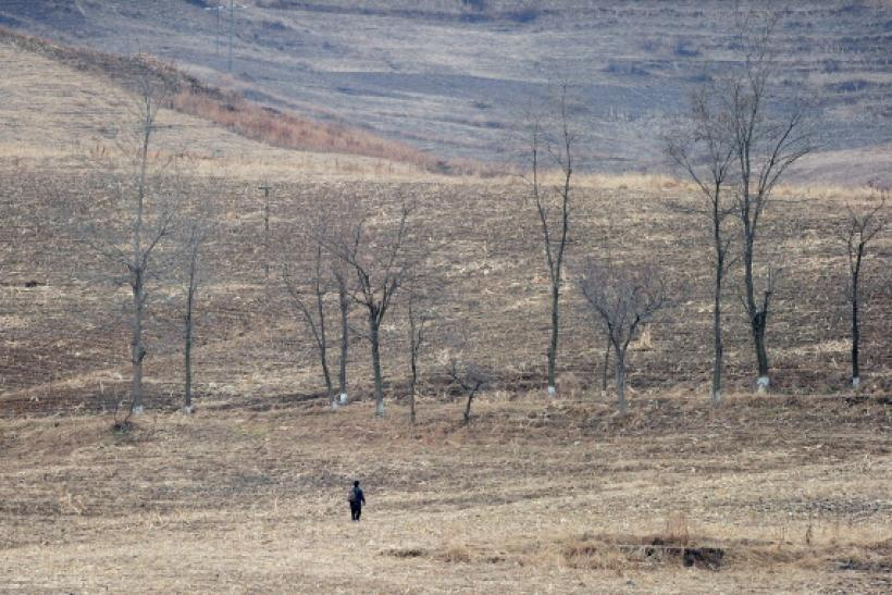 North Korean drought