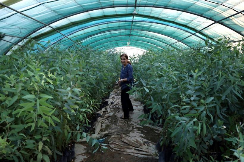 Diman Fatah, here shown tending her plants in her nursery in the Iraqi Kurdish capital of Arbil, encourages other women entrepreneurs to be confident