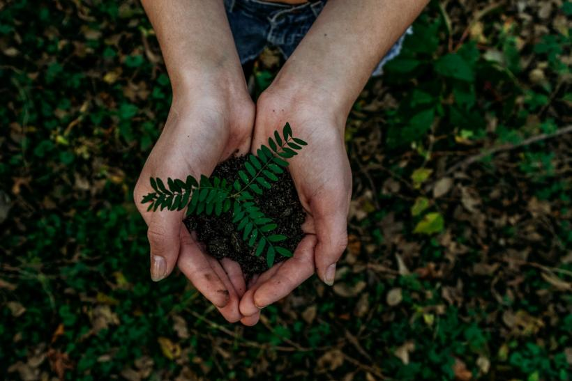 Making Your Production Sustainable
