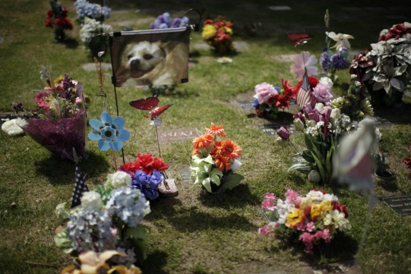 Headstones are seen at a pet cemetery in Huntington Beach