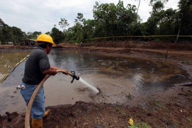 A Ecuadorean Cleans Up The Amazon