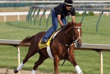 Kentucky Derby and Preakness winner I'll Have Another runs during a pre-race practice session.