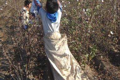 Child Labor in Peru