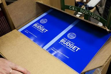 US budget books Nov 2012 2