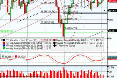 Brent Crude Oil Feb Contract 2013.01.10