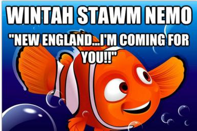 Winter Storm Nemo Meme