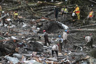 Washington mudslide_1