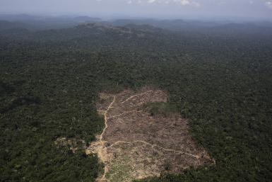 Brazil Amazon Deforestation