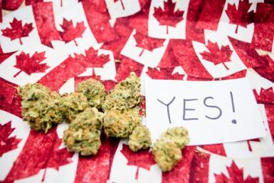 marijuana-cannabis-weed-pot-canada-legalize-buds-getty_large