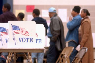 Voter Data From 19 States Sold: Online Security Firms