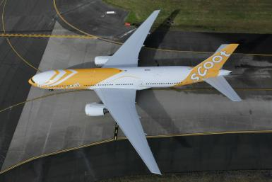 scoot airlinie