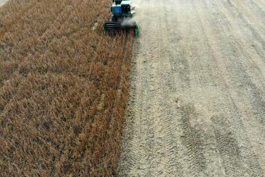 US soybeans like these being harvested in the state of Maryland are among products hit by Chinese tariffs