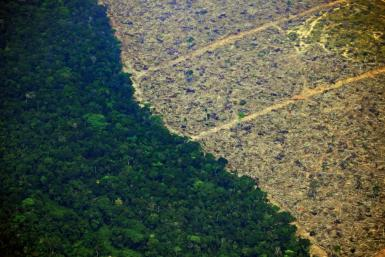 A deforested tract of land near an area affected by fire in the Amazon rainforest is pictured near Porto Velho in northern Brazil's Rondonia state, on August 23, 2019