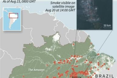 Map showing fires in the Amazon over the last 24 hours, with a satellite image showing smoke in the region.