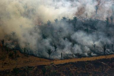 Aerial view showing smoke billowing from a patch of forest being cleared with fire in the surroundings of Boca do Acre, a city in Amazonas State, in northwestern Brazil, on August 24, 2019