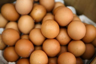 Officials hope reducing the number of eggs will cut chicken supplies and boost market prices