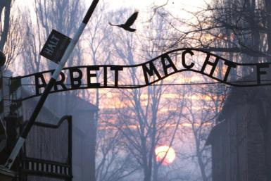 "The Auschwitz memorial museum said historical and geographical information in the Netflix documentary about the locations of Nazi death camps was ""simply wrong"""