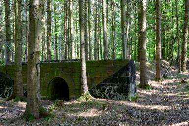 The 1930s era project has been swallowed up in the Bavarian forest