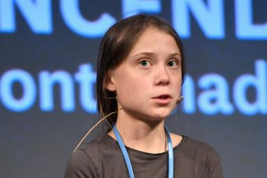 """Swedish climate activist Greta Thunberg said the world """"can't afford any more days without real action being taken"""""""
