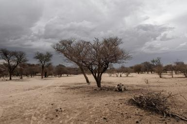 Namibia's government is impatient with the slow pace of land redistribution
