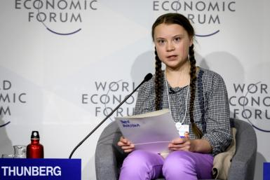 """I want you to panic,"" Thunberg told CEOs and world leaders at the World Economic Forum in Davos in January 2019"