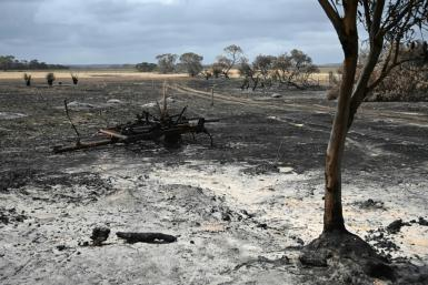 Australia is reeling from bushfires that since September have claimed 28 lives, including two on Kangaroo Island