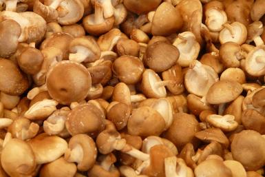 shiitake mushrooms vitamin b12 deficiency