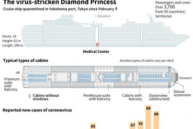 Factfile on the virus-stricken Diamond Princess, including daily cases of reported infections.