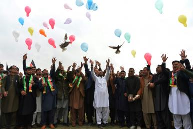 Afghan youths release balloons and pigeons as they celebrate the reduction in violence so far