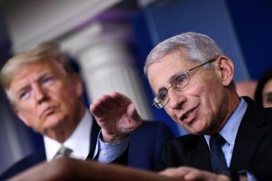 Anthony Fauci says Americans may be able to take summer holidays after the peak of coronavirus passes
