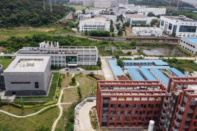 The director of the Wuhan Institute of Virology told a Chinese state broadcaster that the lab has three live strains of bat coronavirus on-site, but that claims the coronavirus could have leaked from the facility were 'pure fabrication'