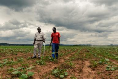 For Zimbabwean farmers like Benard Chinyemba (L), 60, a qualified mechanical engineer who was offered a farm during Zimbabwe's land reform, the programme is a success