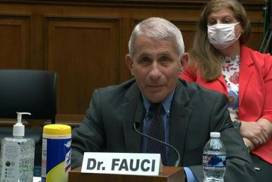 US infectious disease expert Anthony Fauci tells Congress that President Donald Trump never told him or other officials to curb coronavirus testing