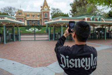 Disneyland in Califonia is the world's second-most visited theme park