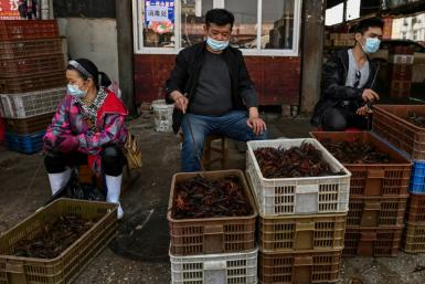 The virus is believed to have emerged at a market that sold live animals in the central city of Wuhan late last year
