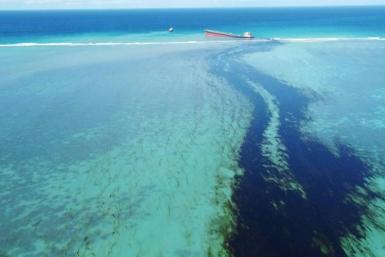 Drone images show vast amounts of oil leaking from a bulk carrier off Mauritius after it ran aground in the southeast of the island. Ecologists fear the ship could break up, which would cause an even greater leak and inflict potentially catastrophic damag