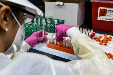 A technician sorts blood samples