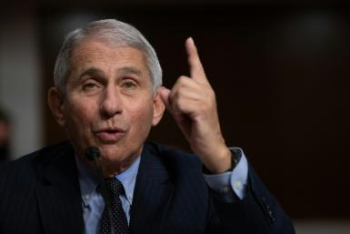 Top US infectious disease expert Anthony Fauci has warned of 'a surge superimposed upon a surge' caused by millions travelling for the Thanksgiving holiday